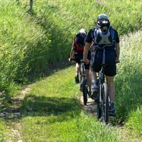 Choisir le bon vélo électrique